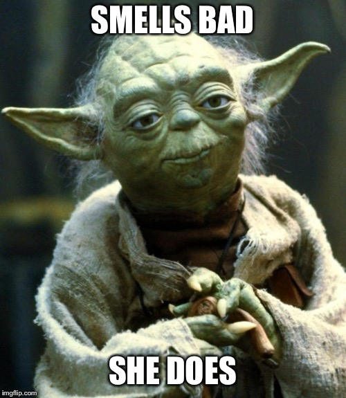 SMELLS BAD SHE DOES | image tagged in memes,star wars yoda | made w/ Imgflip meme maker