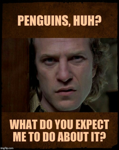 Buffalo Bill, Are you serious?,,, | PENGUINS, HUH? WHAT DO YOU EXPECT ME TO DO ABOUT IT? | image tagged in buffalo bill are you serious?   | made w/ Imgflip meme maker
