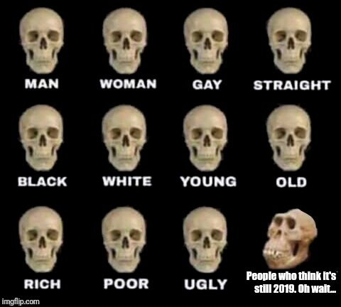 idiot skull | People who think it's still 2019. Oh wait... | image tagged in idiot skull | made w/ Imgflip meme maker