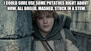 I Could Use Some | I COULD SURE USE SOME POTATOES RIGHT ABOUT NOW, ALL BOILED, MASHED, STUCK IN A STEW. | image tagged in crying samwise,potatoes,stew,lotr,taters,sam | made w/ Imgflip meme maker
