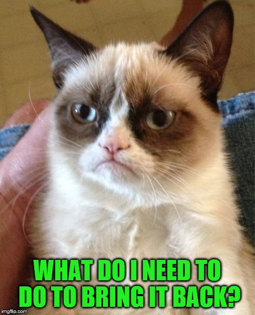 Grumpy Cat Meme | WHAT DO I NEED TO DO TO BRING IT BACK? | image tagged in memes,grumpy cat | made w/ Imgflip meme maker
