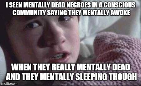 I See Dead People Meme | I SEEN MENTALLY DEAD NEGROES IN A CONSCIOUS COMMUNITY SAYING THEY MENTALLY AWOKE WHEN THEY REALLY MENTALLY DEAD AND THEY MENTALLY SLEEPING T | image tagged in memes,i see dead people | made w/ Imgflip meme maker
