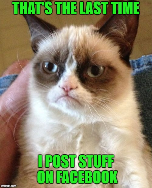 Grumpy Cat Meme | THAT'S THE LAST TIME I POST STUFF ON FACEBOOK | image tagged in memes,grumpy cat | made w/ Imgflip meme maker