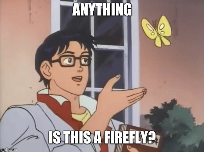 Is this a bird? | ANYTHING IS THIS A FIREFLY? | image tagged in is this a bird | made w/ Imgflip meme maker