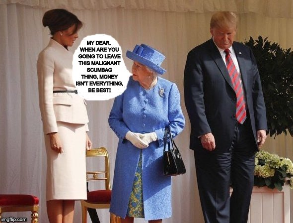 Queen Elizabeth II Gives Good, Sound Advice To melania trump On Leaving The Scumbag! Be Best! | MY DEAR, WHEN ARE YOU GOING TO LEAVE THIS MALIGNANT SCUMBAG THING, MONEY ISN'T EVERYTHING, BE BEST! | image tagged in be best,era womens rights,misogynist trump,melania trump,queen elizabeth 2,scumbag trump | made w/ Imgflip meme maker