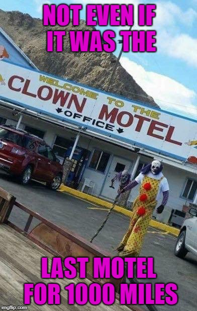 If you're feeling dead tired...you'll just die laughing!!! |  NOT EVEN IF IT WAS THE; LAST MOTEL FOR 1000 MILES | image tagged in clown motel,memes,clowns,funny,scary motel,die laughing | made w/ Imgflip meme maker