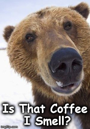Is That Coffee I Smell? | image tagged in 444 | made w/ Imgflip meme maker