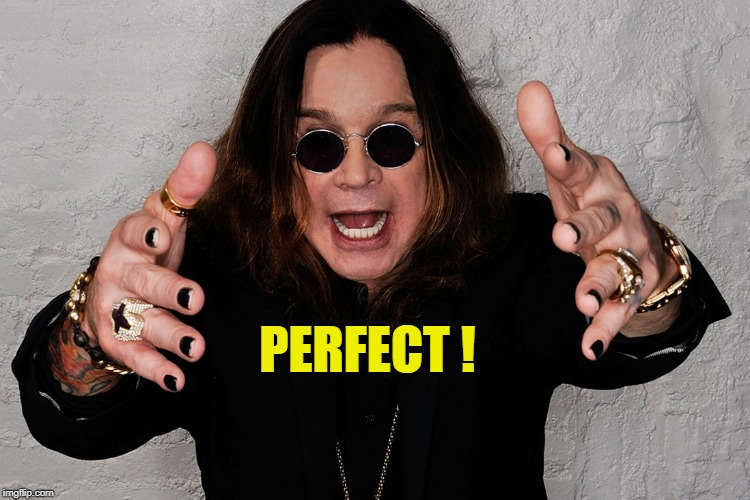 PERFECT ! | made w/ Imgflip meme maker