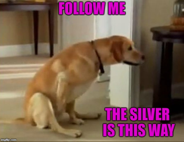 FOLLOW ME THE SILVER IS THIS WAY | made w/ Imgflip meme maker