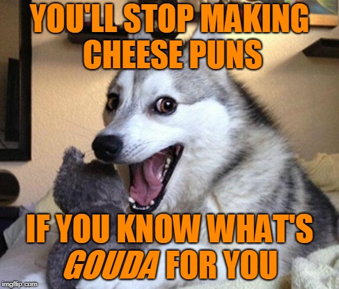 YOU'LL STOP MAKING CHEESE PUNS IF YOU KNOW WHAT'S                 FOR YOU GOUDA | made w/ Imgflip meme maker