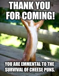 Praise Squirrel | THANK YOU FOR COMING! YOU ARE EMMENTAL TO THE SURVIVAL OF CHEESE PUNS. | image tagged in praise squirrel | made w/ Imgflip meme maker