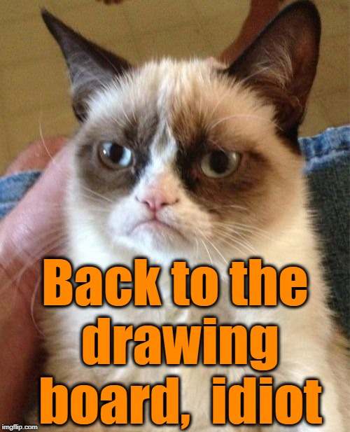 Grumpy Cat Meme | Back to the drawing board,  idiot | image tagged in memes,grumpy cat | made w/ Imgflip meme maker
