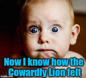 scared baby | Now I know how the Cowardly Lion felt | image tagged in scared baby | made w/ Imgflip meme maker
