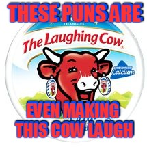 THESE PUNS ARE EVEN MAKING THIS COW LAUGH THESE PUNS ARE EVEN MAKING THIS COW LAUGH | made w/ Imgflip meme maker