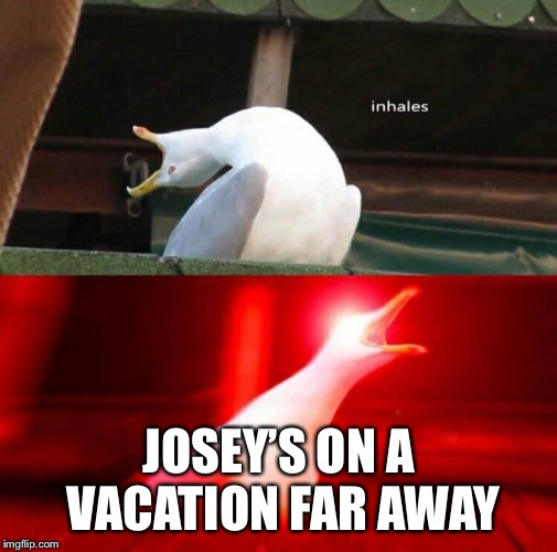 Inhaling Seagull  | JOSEY'S ON A VACATION FAR AWAY | image tagged in inhaling seagull | made w/ Imgflip meme maker