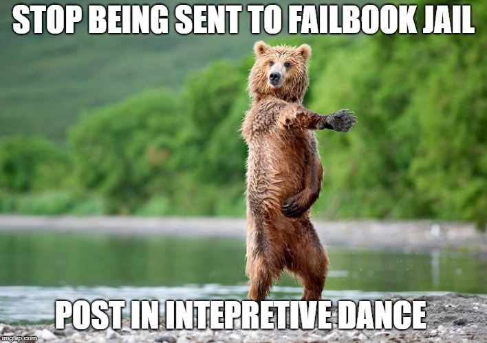 STOP BEING SENT TO FAILBOOK JAIL POST IN INTEPRETIVE DANCE | image tagged in dancing bear | made w/ Imgflip meme maker