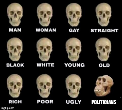 idiot skull | POLITICIANS | image tagged in idiot skull | made w/ Imgflip meme maker