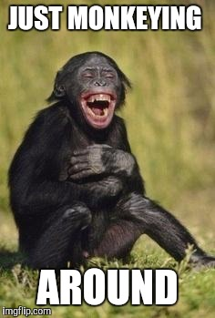 Laughing monkey | JUST MONKEYING AROUND | image tagged in laughing monkey | made w/ Imgflip meme maker
