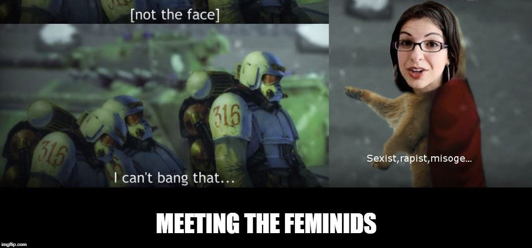 Meeting the feminids | MEETING THE FEMINIDS | image tagged in warhammer40k,feminism | made w/ Imgflip meme maker