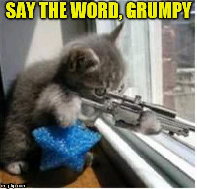 SAY THE WORD, GRUMPY | made w/ Imgflip meme maker