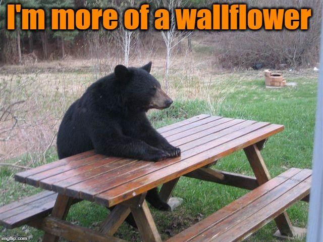 bear picnic table | I'm more of a wallflower | image tagged in bear picnic table | made w/ Imgflip meme maker