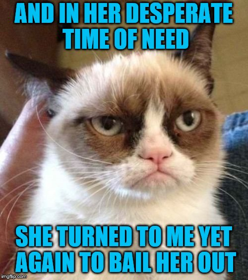 Grumpy Cat Reverse Meme | AND IN HER DESPERATE TIME OF NEED SHE TURNED TO ME YET AGAIN TO BAIL HER OUT | image tagged in memes,grumpy cat reverse,grumpy cat | made w/ Imgflip meme maker