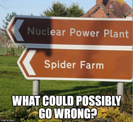 Do you think they did this on purpose, or is this causality? | WHAT COULD POSSIBLY GO WRONG? | image tagged in memes,spider | made w/ Imgflip meme maker