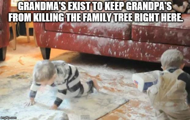 GRANDMA'S EXIST TO KEEP GRANDPA'S FROM KILLING THE FAMILY TREE RIGHT HERE. | image tagged in messy kids | made w/ Imgflip meme maker
