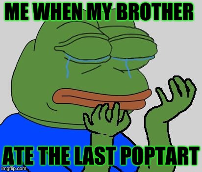 pepe cry | ME WHEN MY BROTHER ATE THE LAST POPTART | image tagged in pepe cry | made w/ Imgflip meme maker