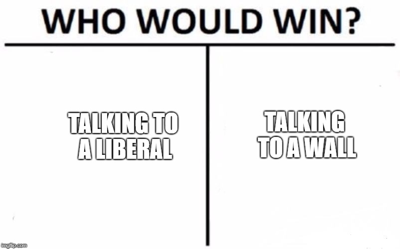 Who Would Win? | TALKING TO A LIBERAL TALKING TO A WALL | image tagged in memes,who would win | made w/ Imgflip meme maker