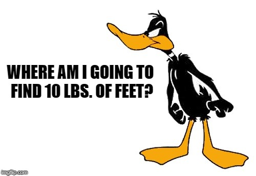 WHERE AM I GOING TO FIND 10 LBS. OF FEET? | image tagged in daffy | made w/ Imgflip meme maker