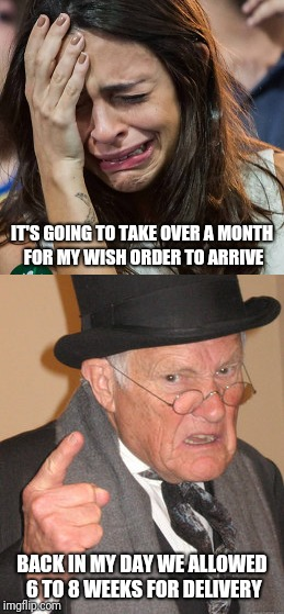 IT'S GOING TO TAKE OVER A MONTH FOR MY WISH ORDER TO ARRIVE BACK IN MY DAY WE ALLOWED 6 TO 8 WEEKS FOR DELIVERY | image tagged in memes | made w/ Imgflip meme maker