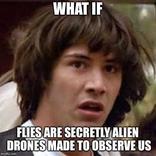 Conspiracy Keanu Meme | WHAT IF FLIES ARE SECRETLY ALIEN DRONES MADE TO OBSERVE US | image tagged in memes,conspiracy keanu | made w/ Imgflip meme maker