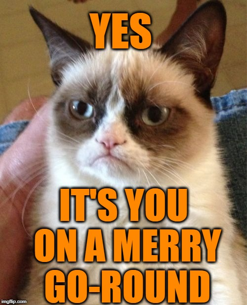 Grumpy Cat Meme | YES IT'S YOU ON A MERRY GO-ROUND | image tagged in memes,grumpy cat | made w/ Imgflip meme maker