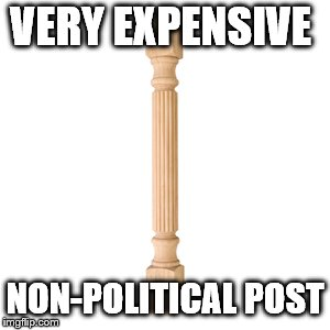 VERY EXPENSIVE NON-POLITICAL POST | image tagged in non-political post | made w/ Imgflip meme maker