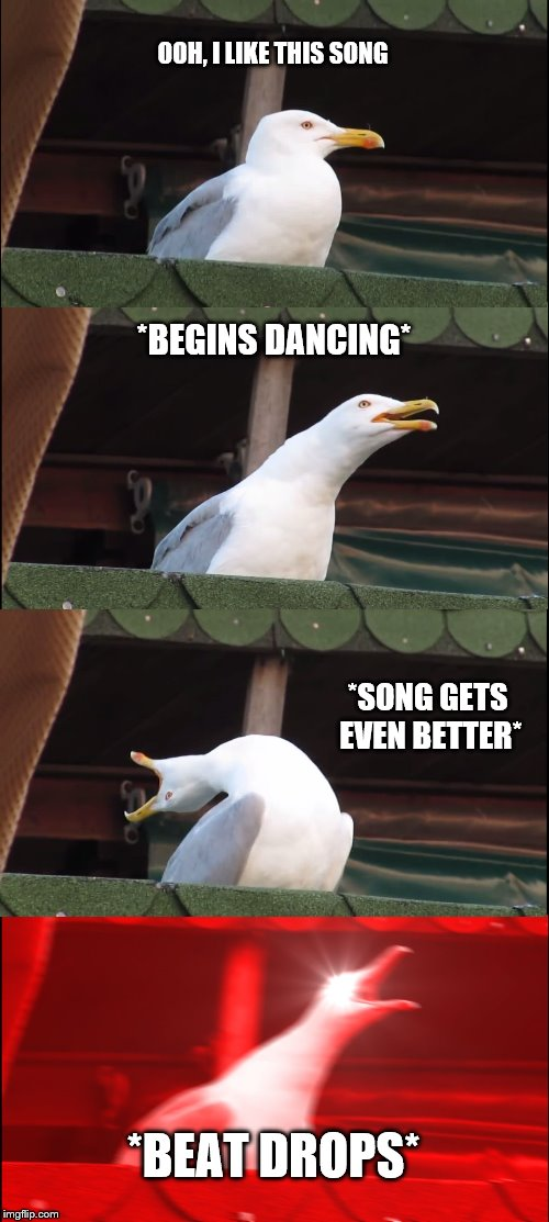 Inhaling Seagull Meme | OOH, I LIKE THIS SONG *BEGINS DANCING* *SONG GETS EVEN BETTER* *BEAT DROPS* | image tagged in memes,inhaling seagull | made w/ Imgflip meme maker