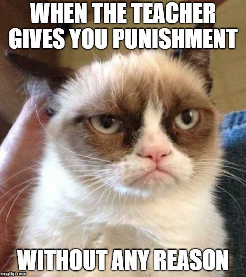 Grumpy Cat Reverse Meme | WHEN THE TEACHER GIVES YOU PUNISHMENT WITHOUT ANY REASON | image tagged in memes,grumpy cat reverse,grumpy cat | made w/ Imgflip meme maker
