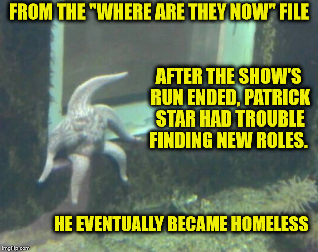 "Stay in school, kids, and study hard, or this can happen to you! | FROM THE ""WHERE ARE THEY NOW"" FILE HE EVENTUALLY BECAME HOMELESS AFTER THE SHOW'S RUN ENDED, PATRICK STAR HAD TROUBLE FINDING NEW ROLES. 