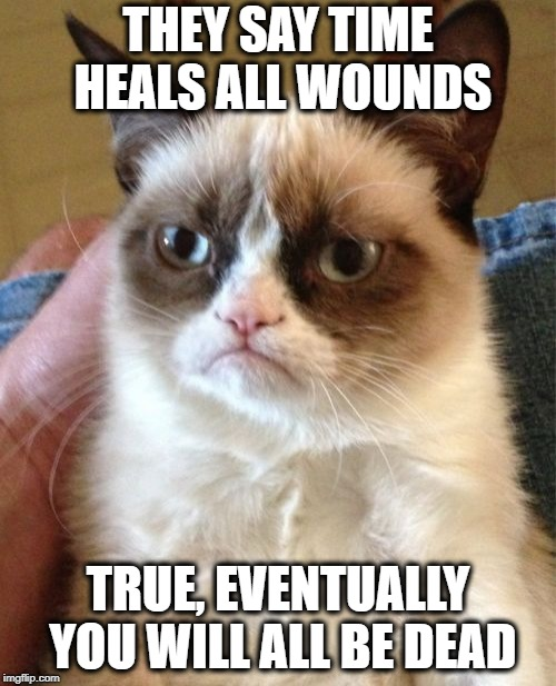 Grumpy Cat | THEY SAY TIME HEALS ALL WOUNDS TRUE, EVENTUALLY YOU WILL ALL BE DEAD | image tagged in memes,grumpy cat,funny memes | made w/ Imgflip meme maker