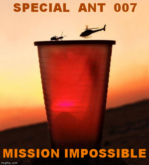 My name is Ant- Z Ant | SPECIAL  ANT  007 MISSION IMPOSSIBLE | image tagged in funny,meme,james bond,007,mission impossible | made w/ Imgflip meme maker
