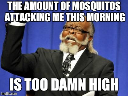 I hate them suckers!   | THE AMOUNT OF MOSQUITOS ATTACKING ME THIS MORNING IS TOO DAMN HIGH | image tagged in memes,too damn high | made w/ Imgflip meme maker