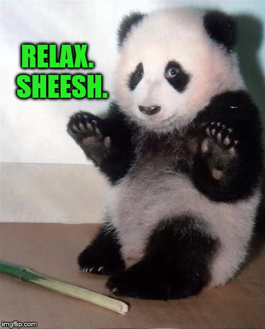 Panda Bear Says 'Relax.  Sheesh.' | RELAX.  SHEESH. | image tagged in hands up panda,relax,chill out dude,funny meme,panda bear | made w/ Imgflip meme maker