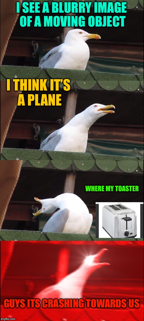 Inhaling Seagull Meme | I SEE A BLURRY IMAGE OF A MOVING OBJECT I THINK IT'S A PLANE WHERE MY TOASTER GUYS ITS CRASHING TOWARDS US | image tagged in memes,inhaling seagull | made w/ Imgflip meme maker