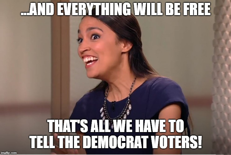 Socialist Candidate | ...AND EVERYTHING WILL BE FREE THAT'S ALL WE HAVE TO TELL THE DEMOCRAT VOTERS! | image tagged in freestuff freecollege freehealthcare socialist | made w/ Imgflip meme maker