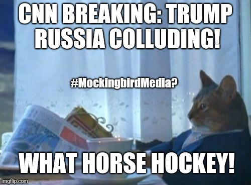 CNN Breaking: Trump Russia Colluding! What Horse Hockey! #HelsinkiSummit #FakeNews#MockingbirdMedia #QAnon #GreatAwakening #MAGA | CNN BREAKING: TRUMP RUSSIA COLLUDING! WHAT HORSE HOCKEY! #MockingbirdMedia? | image tagged in memes,i should buy a boat cat,winning,prosperity,trump russia collusion,cnn fake news | made w/ Imgflip meme maker
