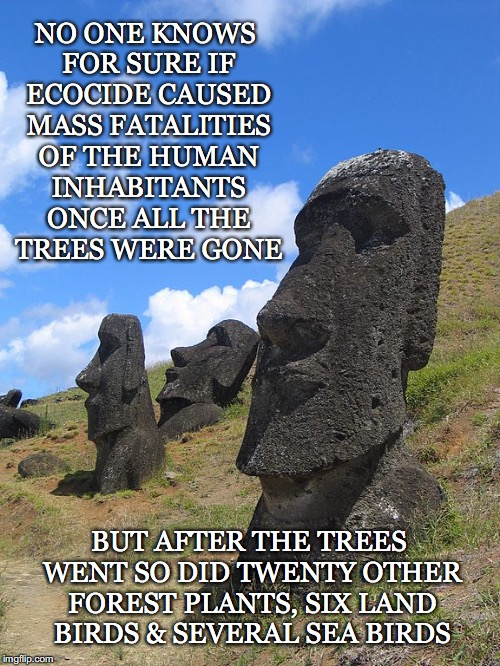 Doomed To Repeat Itself If We Don't Remember And Heed Its Warning | NO ONE KNOWS FOR SURE IF ECOCIDE CAUSED MASS FATALITIES OF THE HUMAN INHABITANTS ONCE ALL THE TREES WERE GONE BUT AFTER THE TREES WENT SO DI | image tagged in easter island,ecocide,fatalities,extinction,trees,birds | made w/ Imgflip meme maker