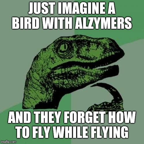 It's raining birds! | JUST IMAGINE A BIRD WITH ALZYMERS AND THEY FORGET HOW TO FLY WHILE FLYING | image tagged in memes,philosoraptor | made w/ Imgflip meme maker