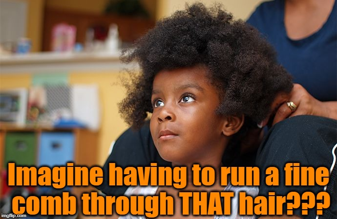 Imagine having to run a fine comb through THAT hair??? | made w/ Imgflip meme maker