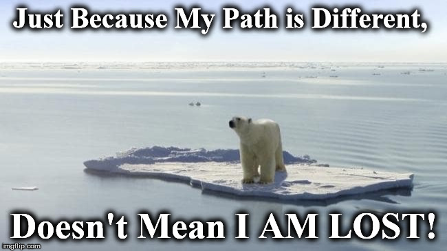 Just Because My Path is Different, Doesn't Mean I AM LOST! | image tagged in 2 | made w/ Imgflip meme maker