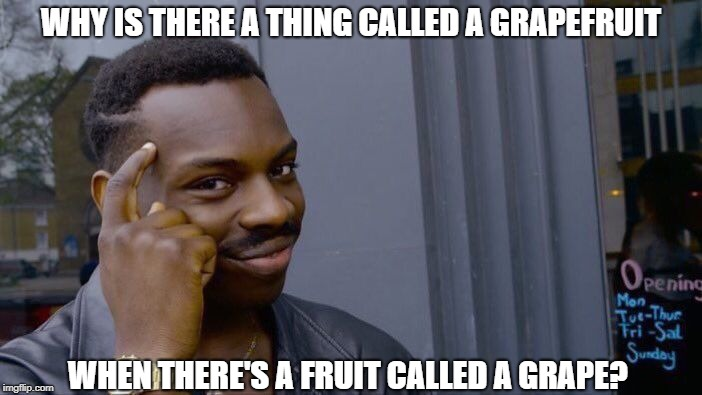 And Speaking of Fruit | WHY IS THERE A THING CALLED A GRAPEFRUIT WHEN THERE'S A FRUIT CALLED A GRAPE? | image tagged in memes,roll safe think about it | made w/ Imgflip meme maker